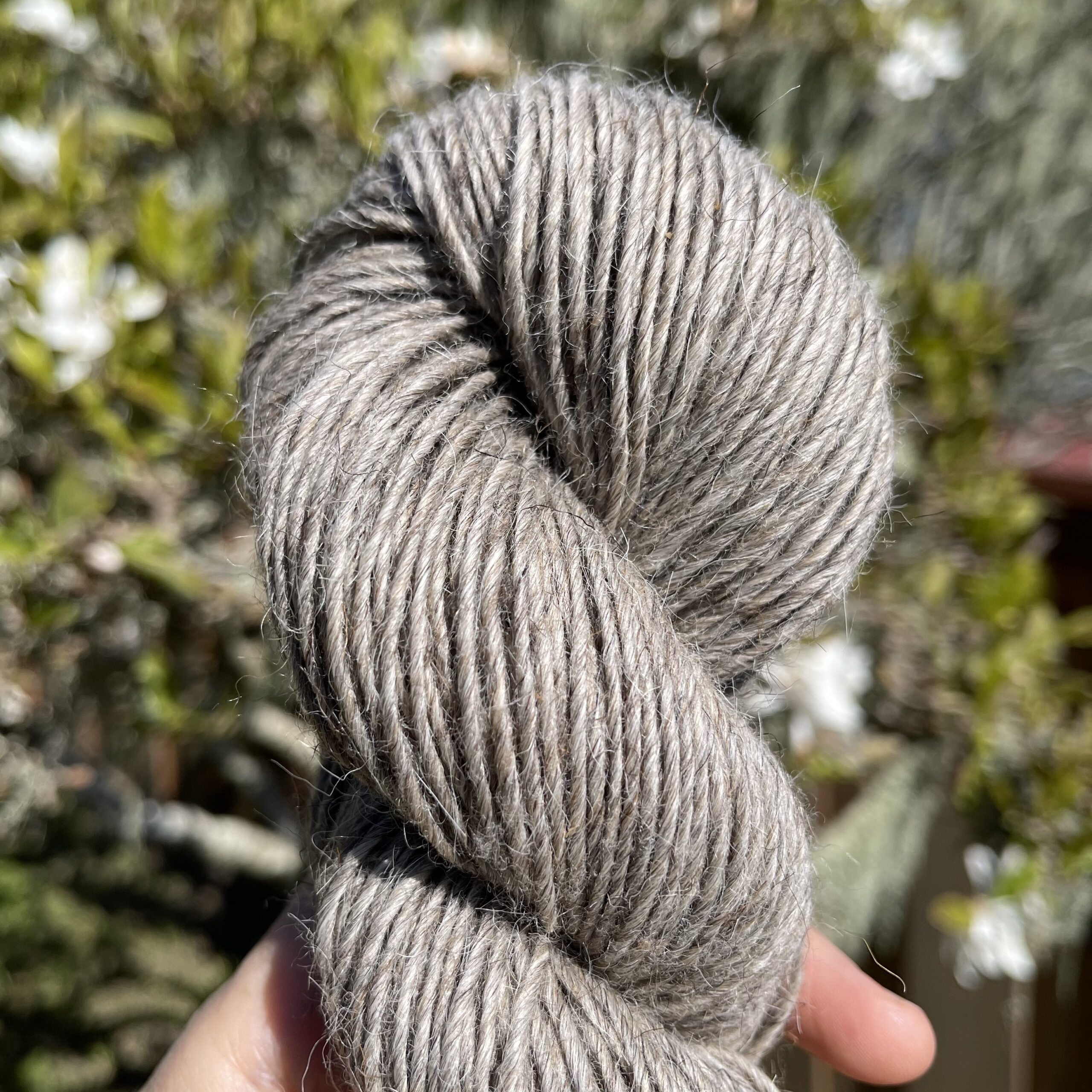 Taupe Blanket